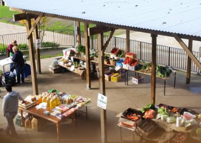 Case Study: The Community Grocer