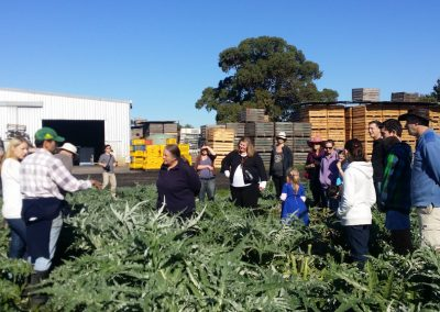 Planning and running open farm days