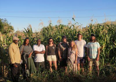 Creating a local food system for Mildura