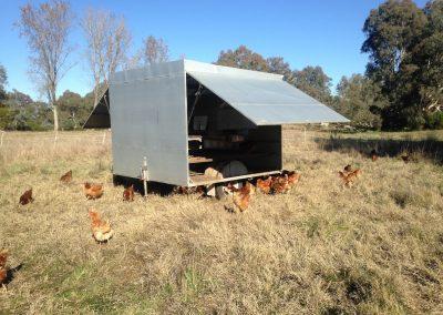 Tarrawalla Farm