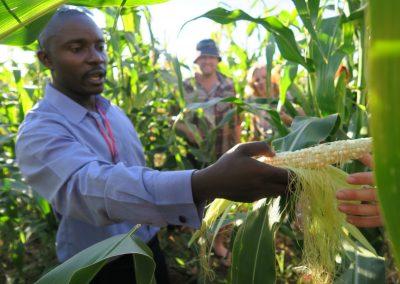 Mildura's Burundian Community Farm