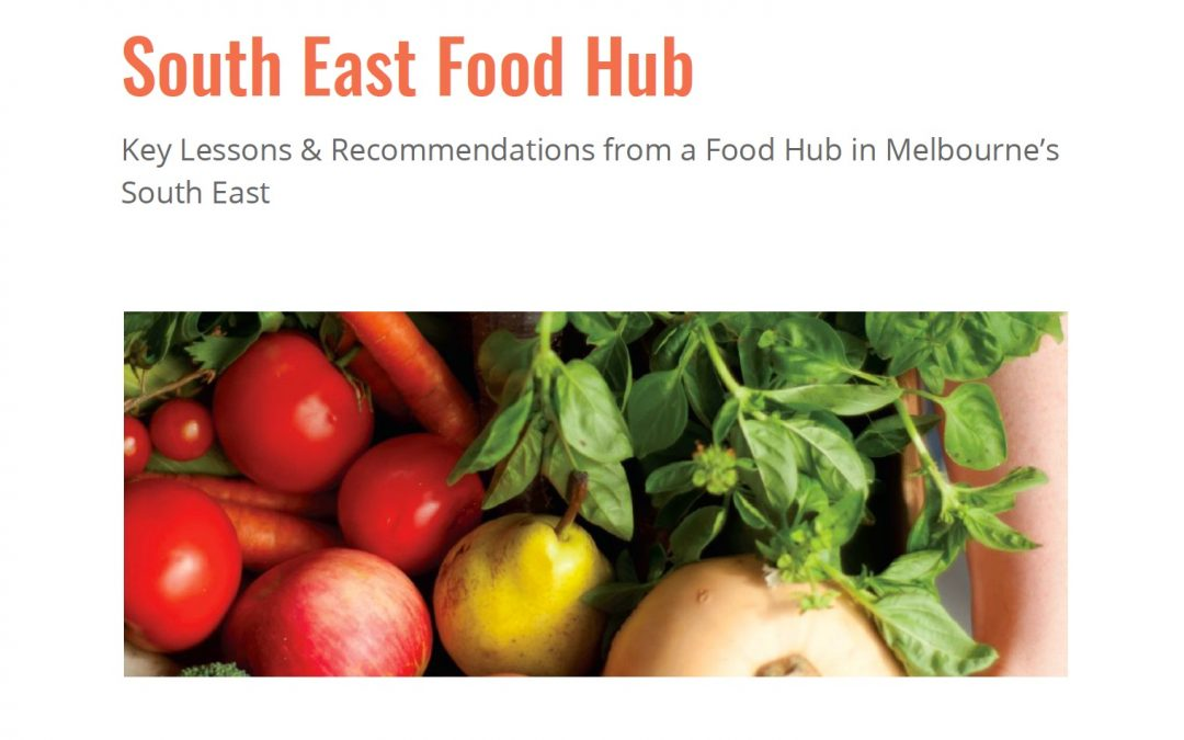 New report released – lessons from running a food hub