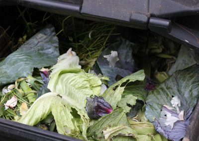 Closing the loop on organic waste