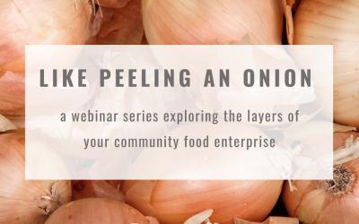 Webinar Series: Like Peeling an Onion
